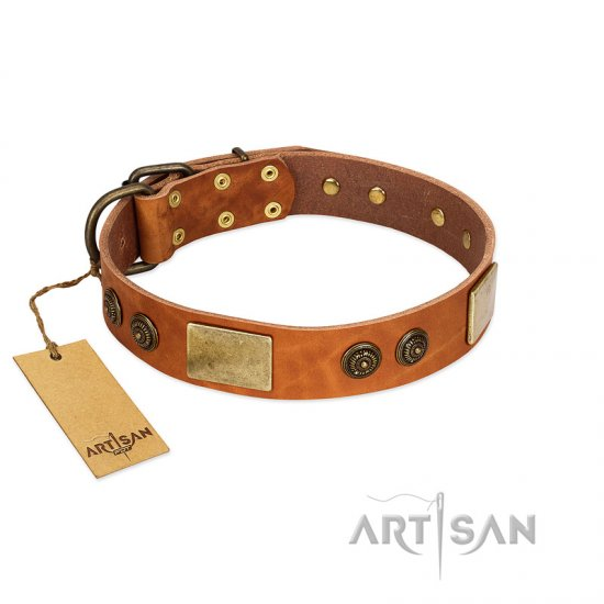 """Bronze Century"" FDT Artisan Tan Leather Doberman Collar with Plates and Brooches with Cool Ornament"