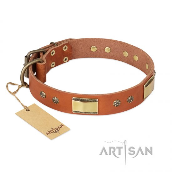 'Enchanting Spectacle' FDT Artisan Doberman Tan Leather Dog Collar with Golden-Like Studs - 1 1/2 inch (40 mm) wide