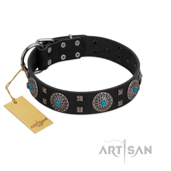 """Boundless Blue"" FDT Artisan Black Leather Doberman Collar with Chrome Plated Brooches and Square Studs"