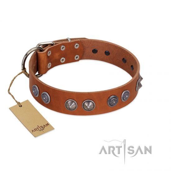 """Silver Necklace"" Incredible FDT Artisan Tan Leather Doberman Colar with Silver-Like Adornments"