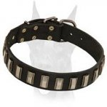 Best fitting decorated leather collar for Doberman