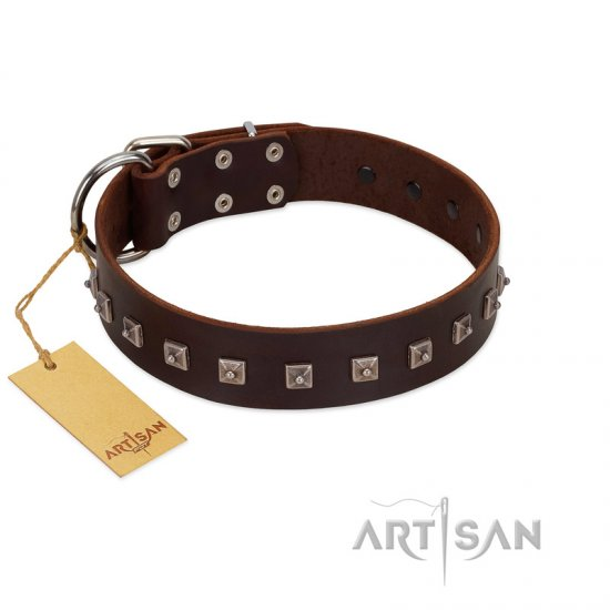 """Kingly Grace"" FDT Artisan Brown Leather Doberman Collar with Silver-like Dotted Studs"