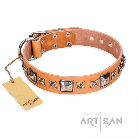 'Silver Chic' FDT Artisan Tan Leather Doberman Collar with Silvery-plated Decorations