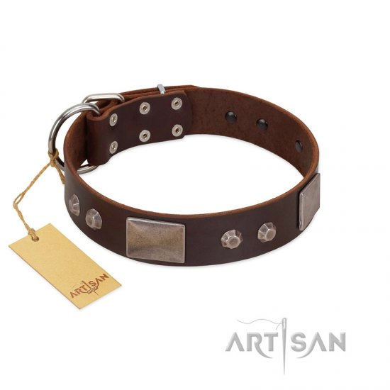 """Stone Stars"" Stylish Handmade FDT Artisan Brown Leather Doberman Collar"