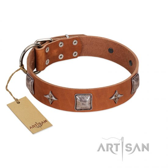 """Lucky Star"" FDT Artisan Tan Leather Doberman Collar with Silver-Like Embellishments"