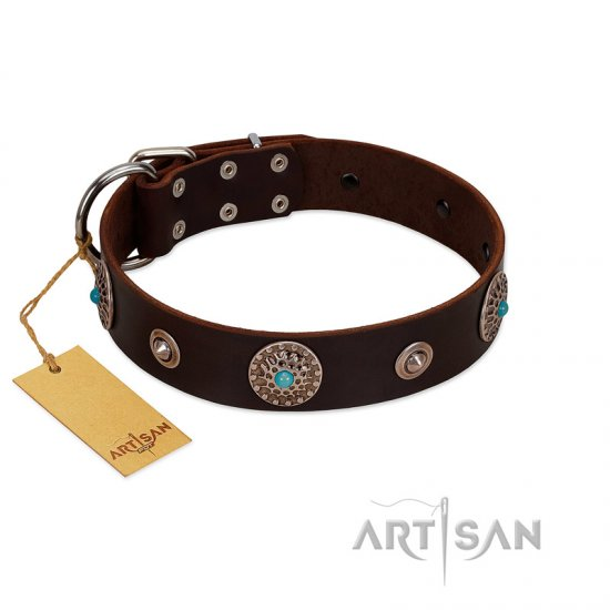 """Magic Stones"" FDT Artisan Brown Leather Doberman Collar with Chrome Plated Brooches and Studs"