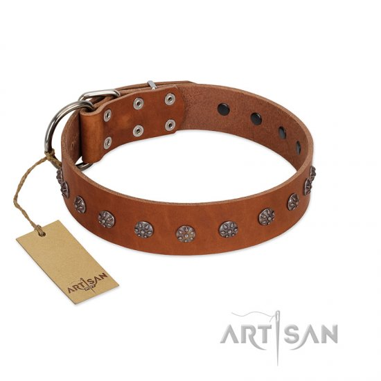 """Daintiness"" Designer Handmade FDT Artisan Tan Leather Doberman Collar with Silver-Like Adornments"
