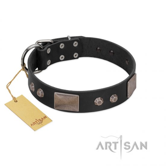 """Square Stars"" Modern FDT Artisan Black Leather Doberman Collar with Square Plates and Studs"