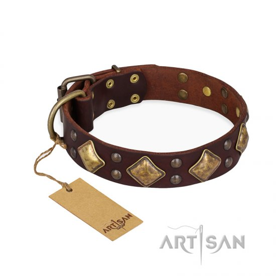 'Golden Square' FDT Artisan Brown Leather Doberman Collar with Large Squares - 1 1/2 inch (40 mm) wide
