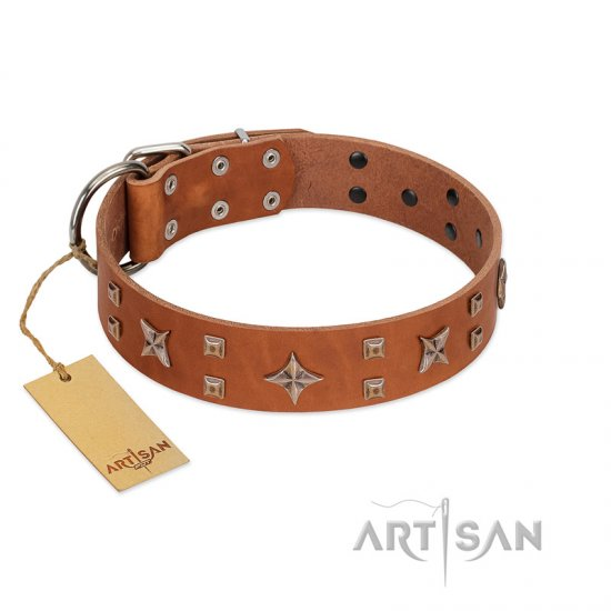 """Dreamy Gleam"" FDT Artisan Tan Leather Doberman Collar Adorned with Stars and Squares"
