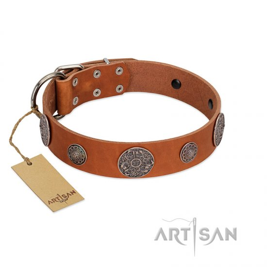 """Foxy Nature"" FDT Artisan Tan Leather Doberman Collar with Chrome Plated Brooches"