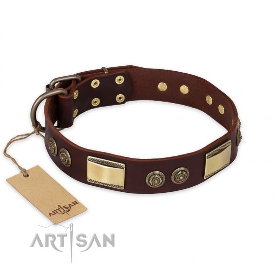 """Golden Stones"" FDT Artisan Brown Leather Doberman Collar with Old Bronze Look Adornment - 1 1/2 inch (40 mm) wide"