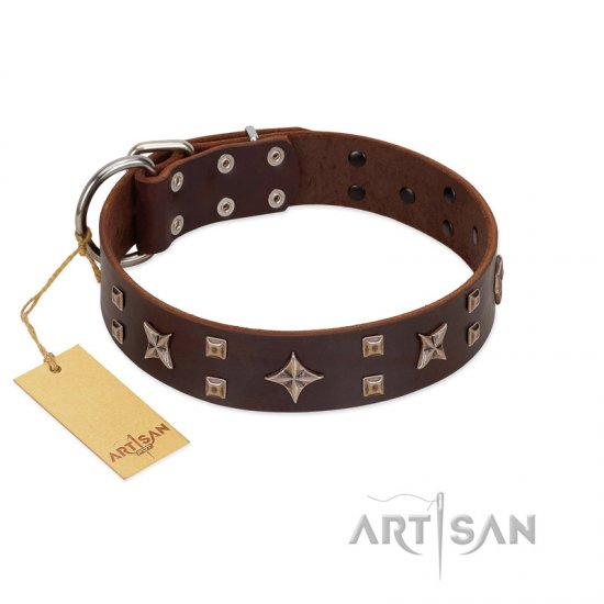 """Stars in Sands"" Modern FDT Artisan Brown Leather Doberman Collar with Studs and Stars"