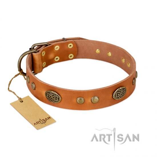 """Sun Beams"" FDT Artisan Tan Leather Doberman Collar with Decorations"