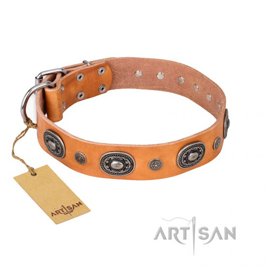 'Twinkle Twinkle' FDT Artisan Incredible Studded Tan Leather Doberman Collar with Silver-Like Circles