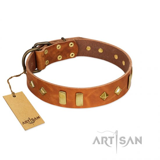 """Woofy Dawn"" FDT Artisan Tan Leather Doberman Collar with Plates and Rhombs"