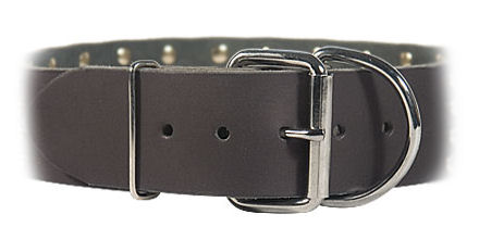 2 inch wide All Weather Collar for Doberman-Leather Collar