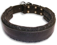 Padded Black Collar for Doberman 1.5 inch (40 mm) Wide