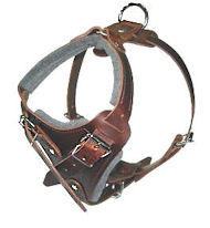 DOBERMAN adjustable dog harness - H1