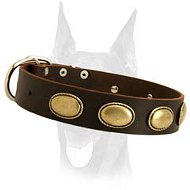 Retro rulz vintage leather collar for Doberman