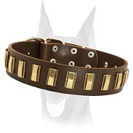 Luxury leather collar with brass plates for your Doberman