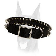Stylish nylon collar with 2 rows of spikes for Doberman