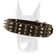 Gorgeous spiked and studded leather collar for Doberman