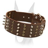 Exclusive design wide leather collar with studs and spikes for Doberman