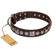 'Pierian spring' FDT Artisan Brown Leather Doberman Dog Collar with Silvery Decorations - 1 1/2 inch (40 mm) wide