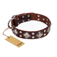 """King of Grace"" FDT Artisan Brown Genuine Leather Doberman Collar for Walking"