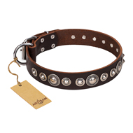 """Step and Sparkle"" FDT Artisan Studded Brown Leather Doberman Collar"