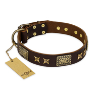 """Sparkling Bronze"" FDT Artisan Brown Leather Doberman Collar with Gold-like Adornments"