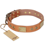 'The Middle Ages' FDT Artisan Handcrafted Tan Leather Doberman Dog Collar