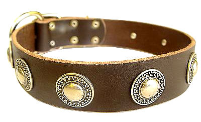 Deluxe Leather Dog Collar with jewelry for Doberman