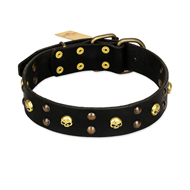 FDT Artisan 'Heavy Metal' Leather Doberman Collar with Skulls and Studs 1 1/2 inch (40 mm)