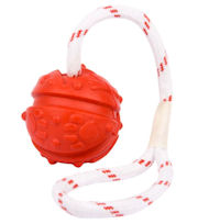 Fun Ball on a Rope for Doberman (2 3/4 inch)