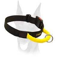 Everyday durable nylon Doberman collar with a handle