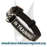 Easy adjustable nylon collar with quick release buckle for your Doberman