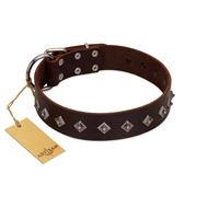 """Boundless Energy"" Premium Quality FDT Artisan Brown Designer Leather Doberman Collar with Small Pyramids"