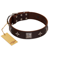 """Cold Star"" Designer FDT Artisan Brown Leather Doberman Collar with Silver-Like Adornments"
