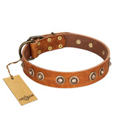 """Precious Relic"" FDT Artisan Tan Leather Doberman Collar Adorned with Old Bronze Look Studs"