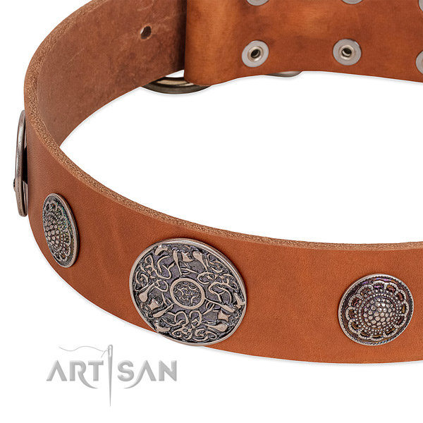 Strong traditional buckle on full grain natural leather dog collar