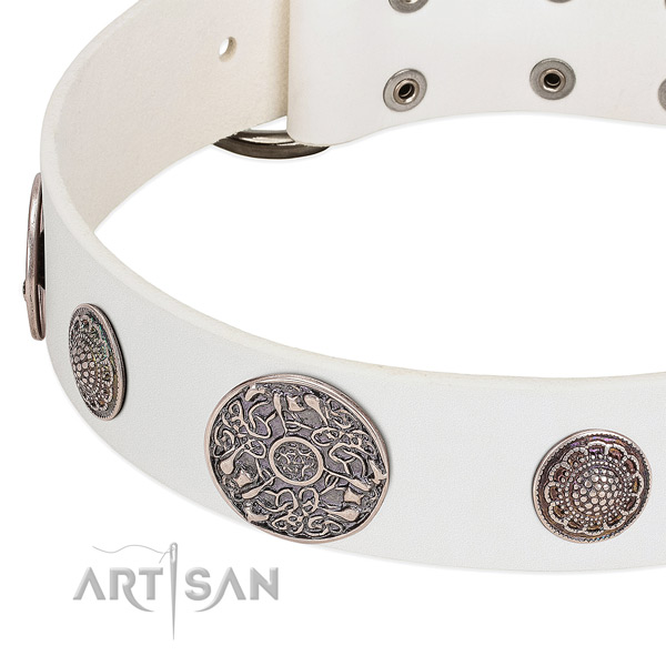 Strong studs on full grain natural leather dog collar