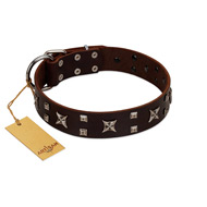 """Bigwig Woof"" FDT Artisan Brown Leather Doberman Collar with Chrome Plated Stars and Square Studs"