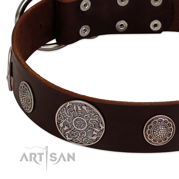 Rust resistant buckle on full grain genuine leather dog collar