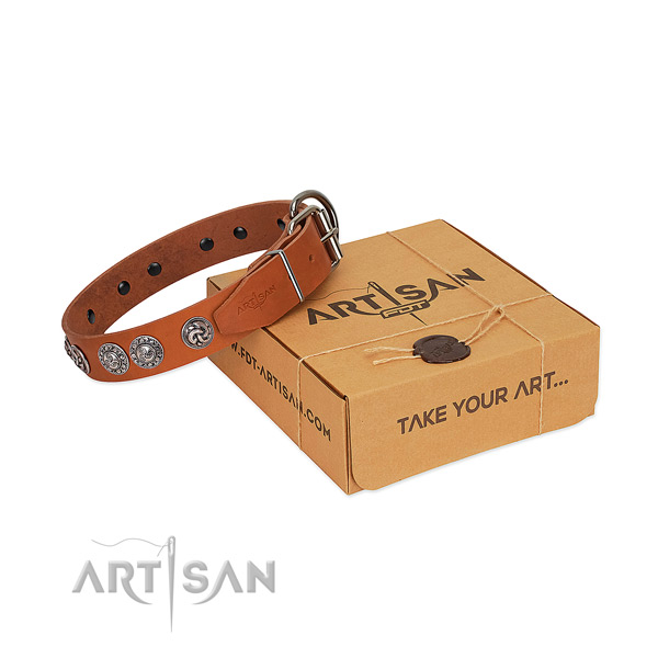 Awesome full grain natural leather collar for your dog walking in style