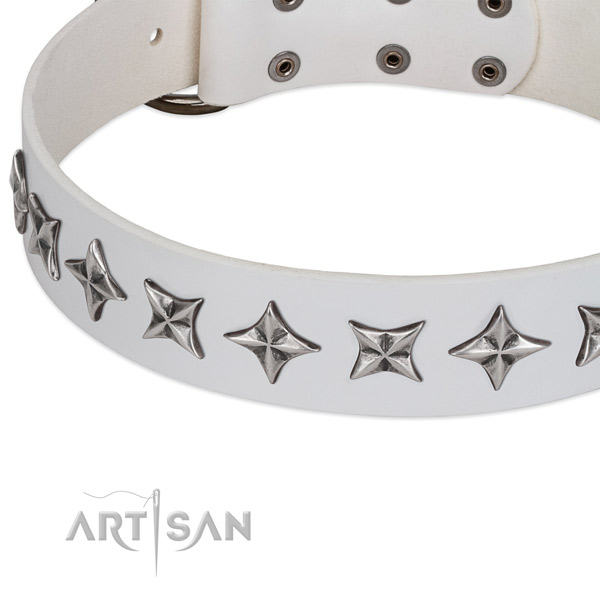 Stylish walking adorned dog collar of fine quality natural leather