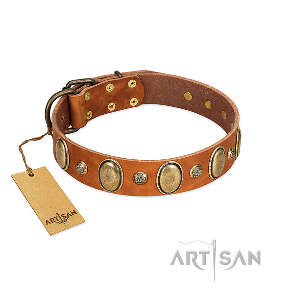 Full grain natural leather dog collar of top notch material with unique studs