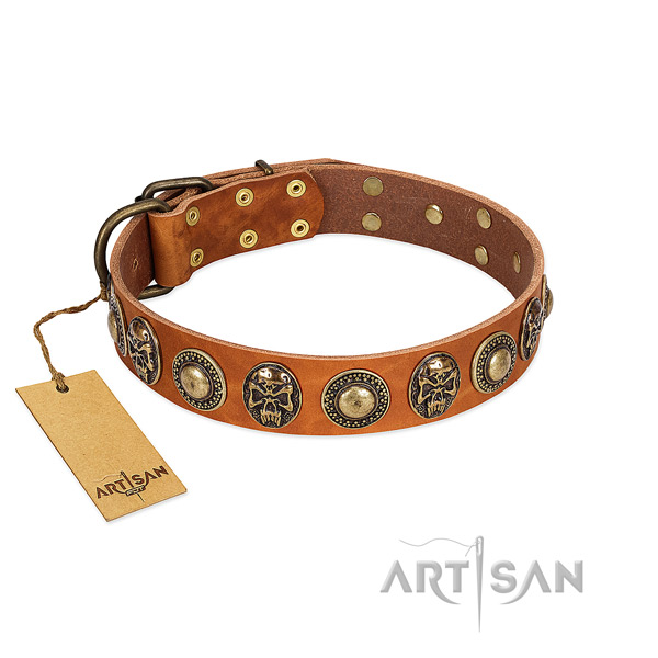 Easy to adjust full grain genuine leather dog collar for walking your doggie