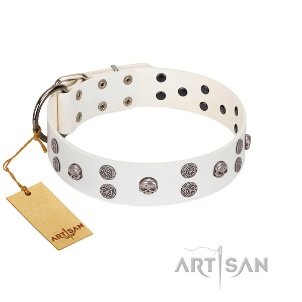 Handy use adorned full grain genuine leather collar for your doggie